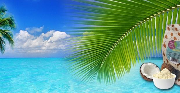 Prinavráťte rovnováhu telu a detoxikujte ho ľahko stráviteľnou kokosovou múkou, ideálnou pri diéte vďaka nízkemu obsahu uhľohydrátov.