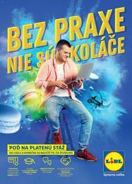 35. stránka Lidl letáku