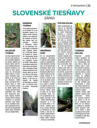 23. stránka Kinekus letáku